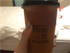 茶遇沁馨_3