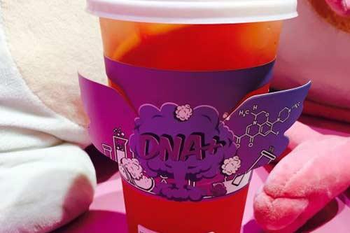 DNA+产品图二