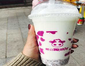 有只酸奶牛_3
