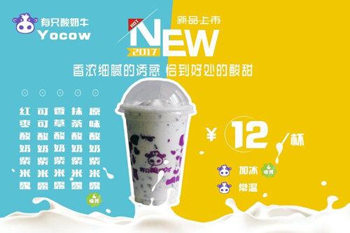 石家庄有只酸奶牛怎么加盟?2019年有只酸奶牛加盟费多少钱?