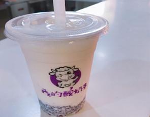 我的酸奶牛_1