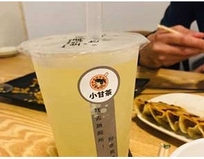 小甘茶GUMP-T_2