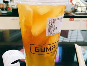 小甘茶GUMP-T_3