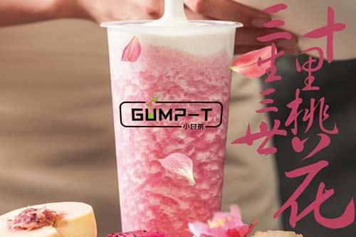 小甘茶GUMP-T产品图一
