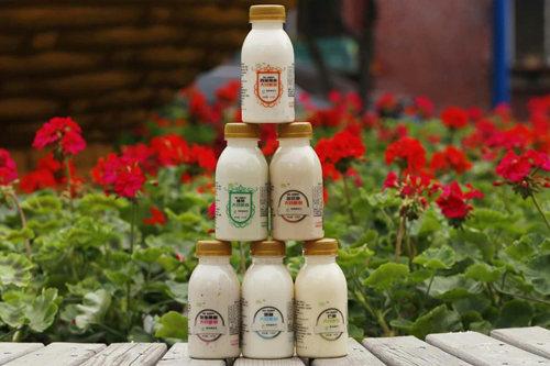 纯素大豆酸奶产品图片一
