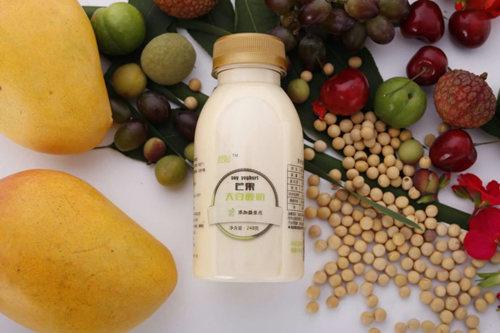 纯素大豆酸奶产品图片二